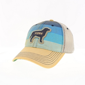 PTOWN DOG HAT MULTI COLOR